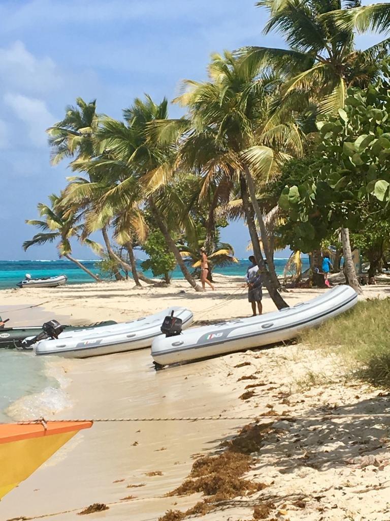 Karibik Mitsegeln